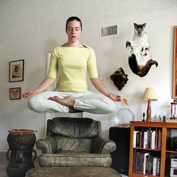 картинки приколы про медитацию образом