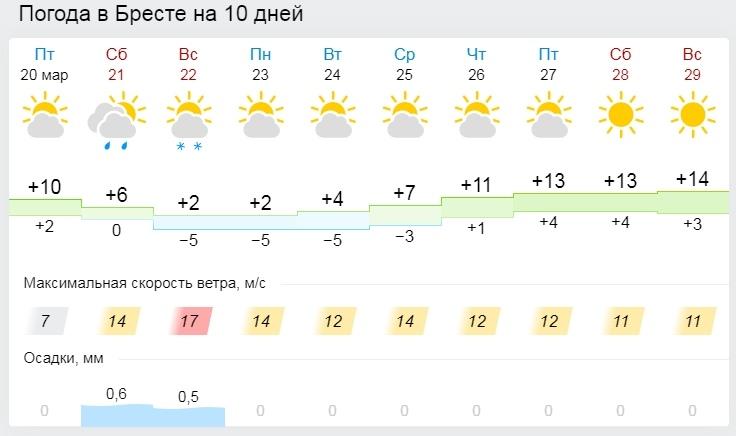 Такую весну мы не ждали! В выходные по ночам морозы до -10°С, а днем не намного теплее