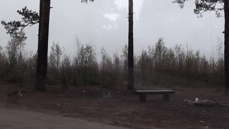 Осенняя дорога в Кирилловском Год не помню