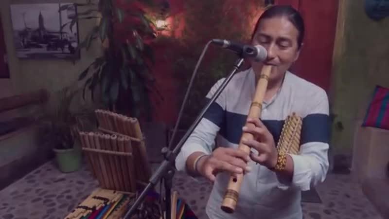 Luis Fonsi Despacito ft Daddy Yankee Flute Instrumental