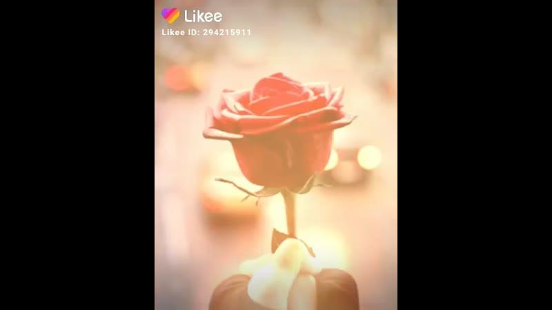 Like_6777030374855897007.mp4