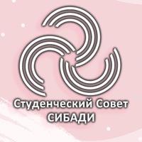 Логотип Студенческий совет СибАДИ
