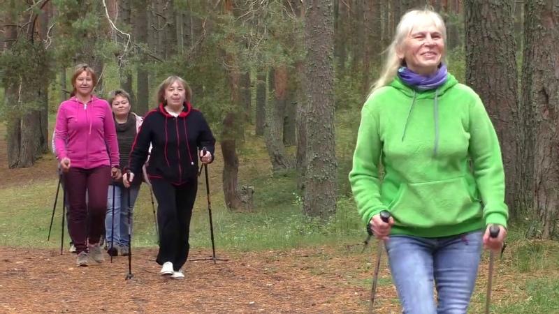 Скандинавская ходьба в Тарноге