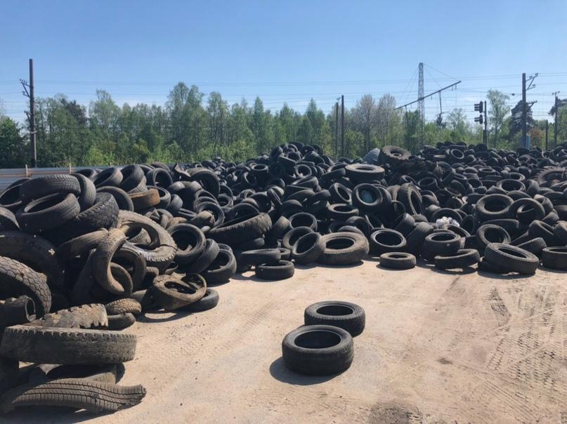 площадка по накоплению шин во Всеволожске, организованная при поддержке местной администрации