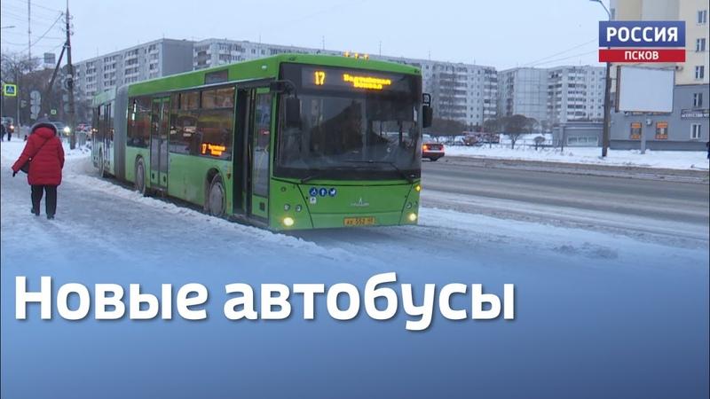 Новые автобусы начали курсировать по Пскову Сократилось ли время их ожидания