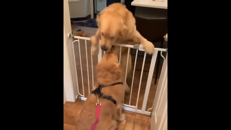 These two Best friends are so happy to get together