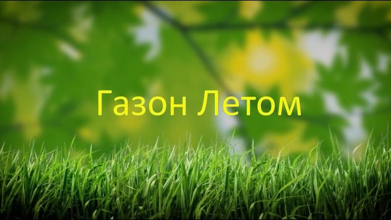 Уход за газоном в конце весны и летом