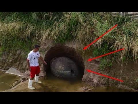 Мужчина нашел огромное яйцо с чешуей что же оказалось внутри