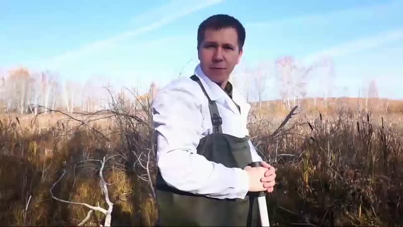 МАМИКС УТОНУЛ В БОЛОТЕ
