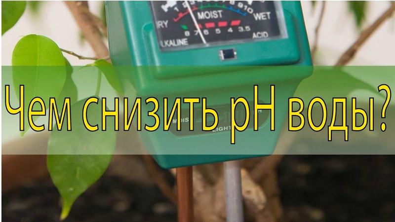 Чем лучше снизить pH воды Эксперимент с Азотной Ортофосфорной Лимонной к той и фосфатом мочевины