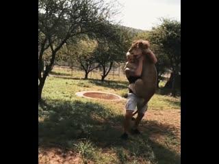 Любовь дикого зверя к человеку