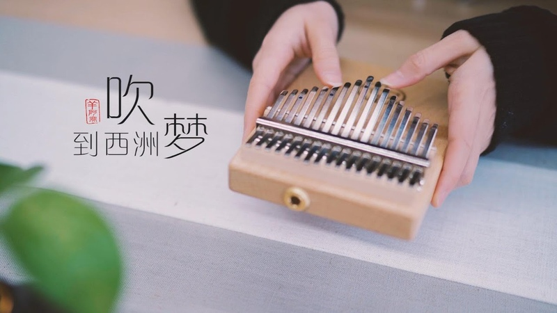 Away From the Crowd Stay Home and Become a Musician!吹梦到西洲 April Yang Kalimba Cover