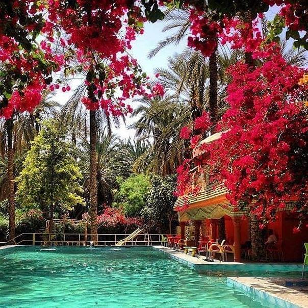 Туры в Тунис на 6 ночей в отель 4* со «все включено» за 15500 с человека в апреле