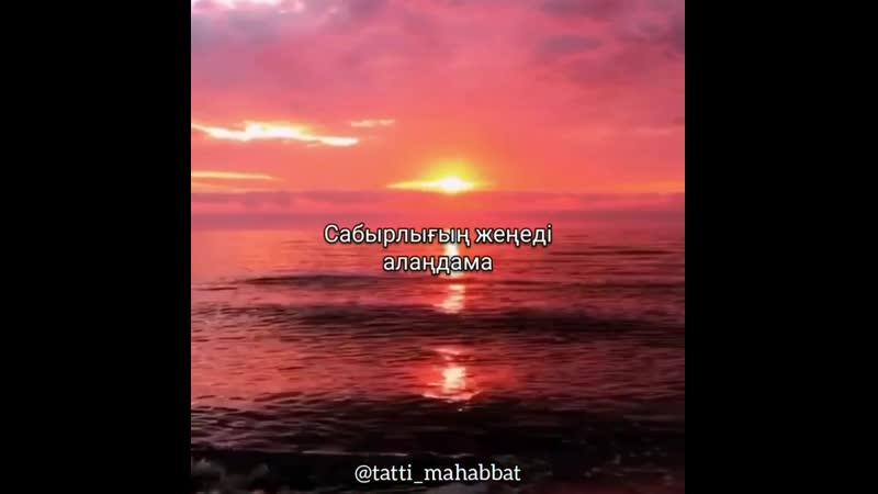 Tatti mahabbat InstaUtility 00 B w9bJMlgf 11