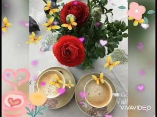 С Добрым Утром! ☕☀️☀️☀️Яркого и Позитивного Утра Всем! 🌺🌺🌺