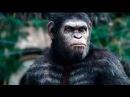 Фильм Планета обезьян Революция 2014 онлайн в хорошем качестве
