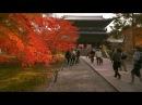 Kyoto in slow motion - Nanzenji 南禅寺【紅葉の京都】 GH4 - Glidecam