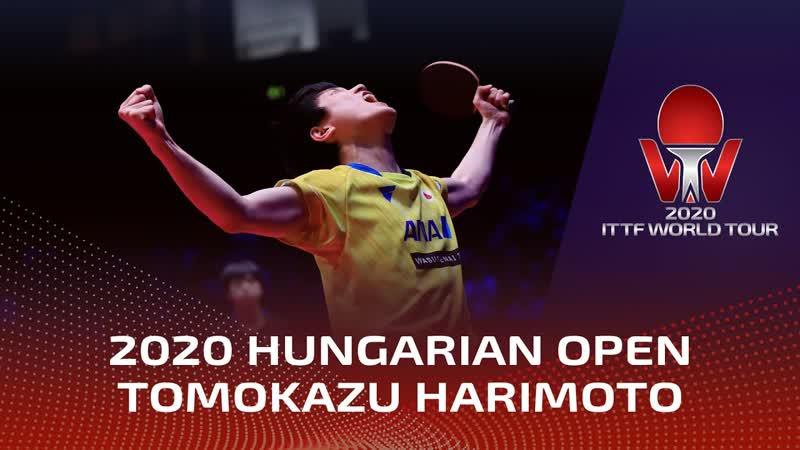 Tomokazu Harimoto Champion Hungarian Open 2020