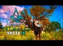 Assassin's Creed: Valhalla ➤ Прохождение игры ➤ Часть - 8