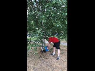 Запускаю флешмоб «Поделимся водой с деревьями»! ()