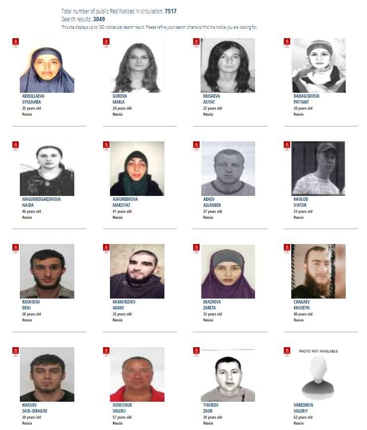 Особенности состава разыскиваемых преступников из РФ по данным Интерпола
