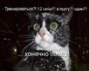 Личный фотоальбом Андрея Драгомира