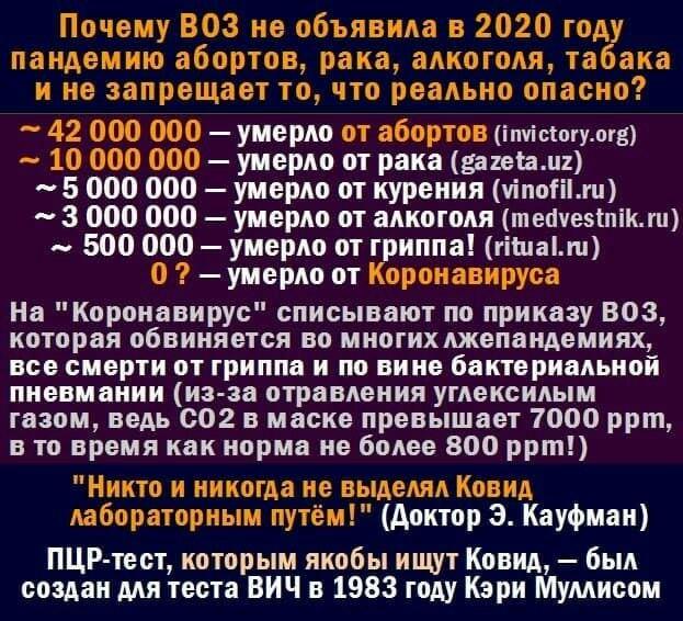 Секта СВИДЕТЕЛЕЙ КОРОНАВИРУСА 54173