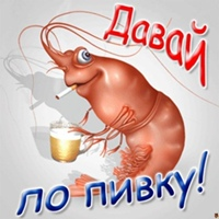 фото из альбома Михаила Шестакова №3