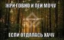 Персональный фотоальбом Артема Гарифова