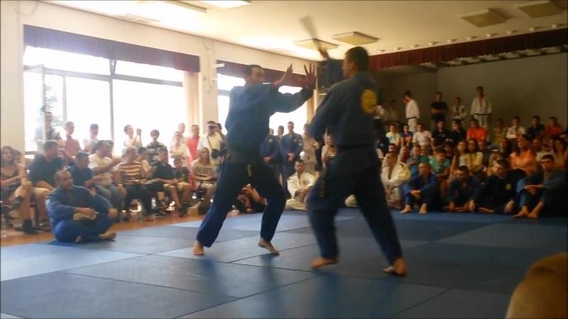 Realni Aikido - Polaganje za majstorska zvanja (Stefan Zinaić i Vladimir Vajić)