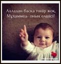 Персональный фотоальбом Гулшат Тилеубаевой