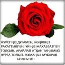 Фотоальбом Janylsyn Sarybaeva
