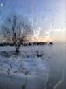 Оля Овечкина фотография #10