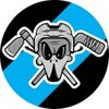 TOPICE.RU - пожалуй, лучшая хоккейная экипировка