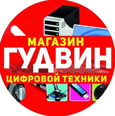 Гудвин Барышский