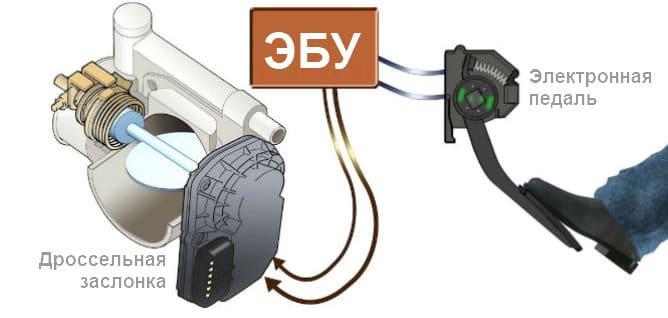 Электронная педаль газа: что это такое и как работает, изображение №2