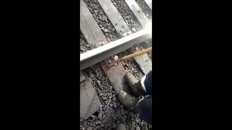 Два путейца РЖД выложили ролик в каком состоянии в данный момент одна из железных дорог