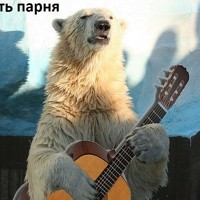 Фото Анны Порохиной