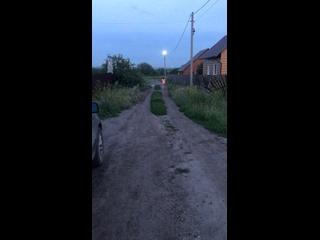 Video by Vitalina Isakova-Yugay