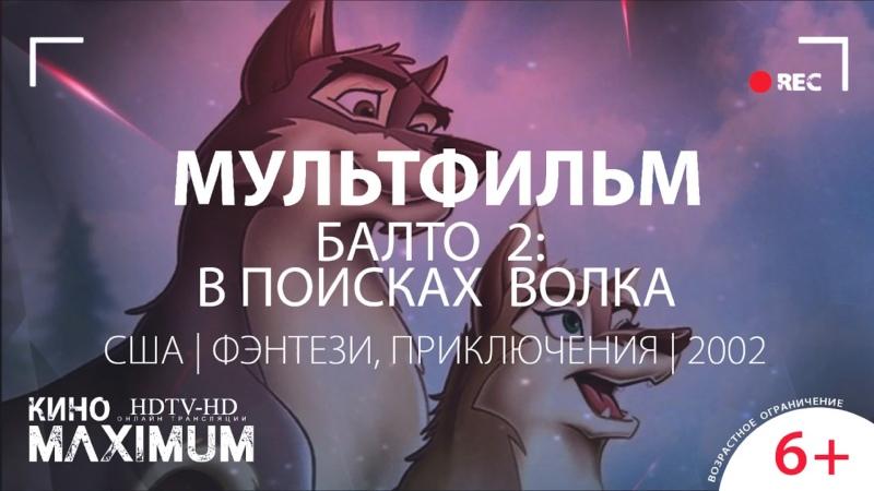 Кино Балто 2 В поисках волка 2002 MaximuM
