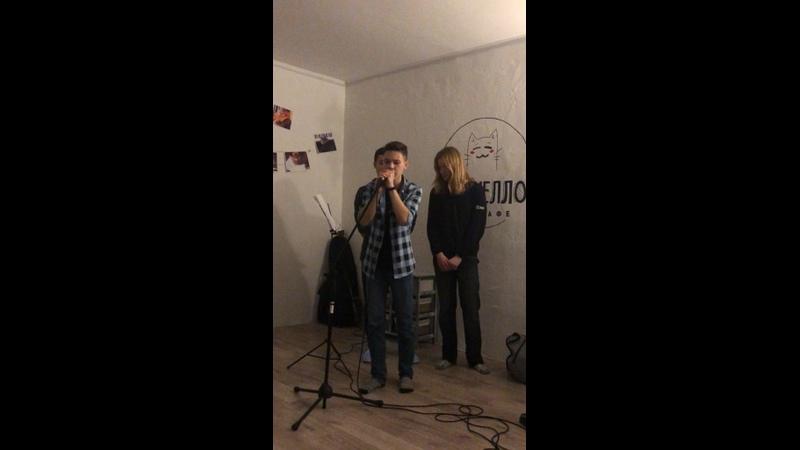 Видео от Котокафе Мурчелло г Муром