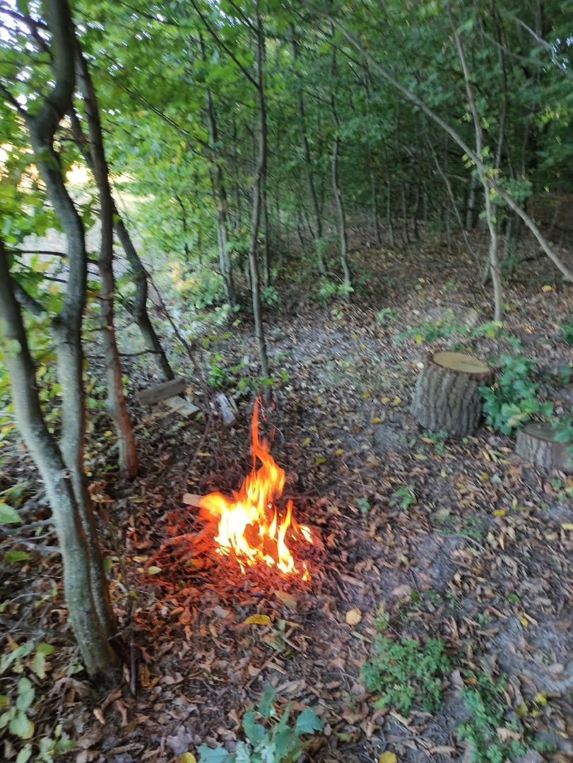 Медитация у костра в лесу