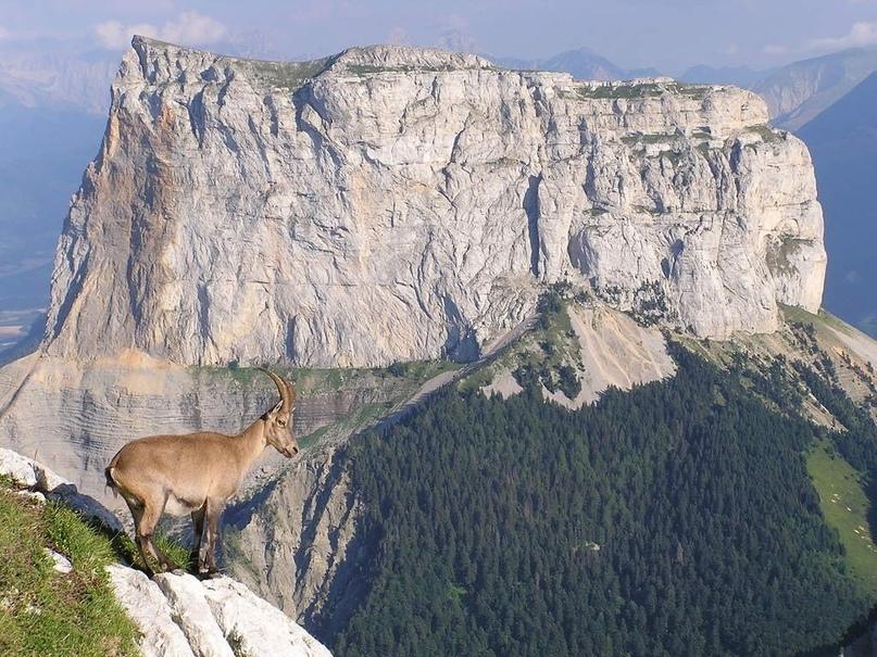 Одинокая вершина Mont Aiguille