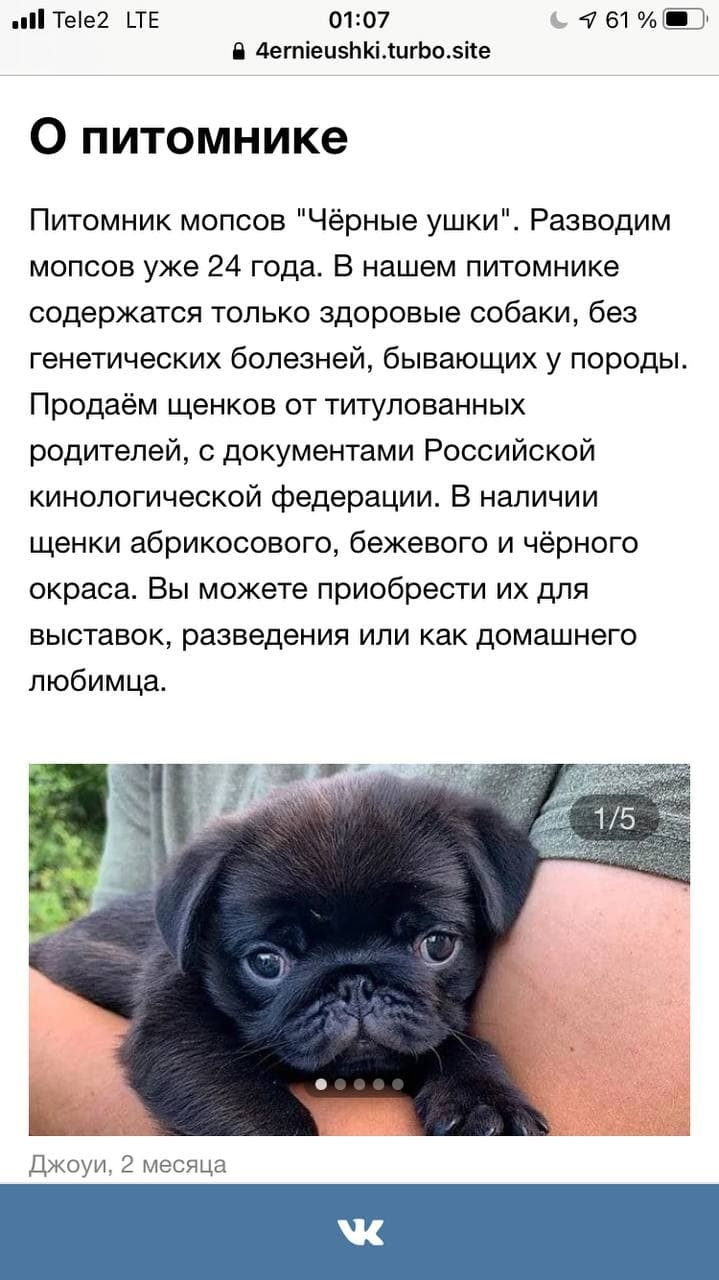 Турбо-страницы Яндекса: пошаговое руководство, изображение №13