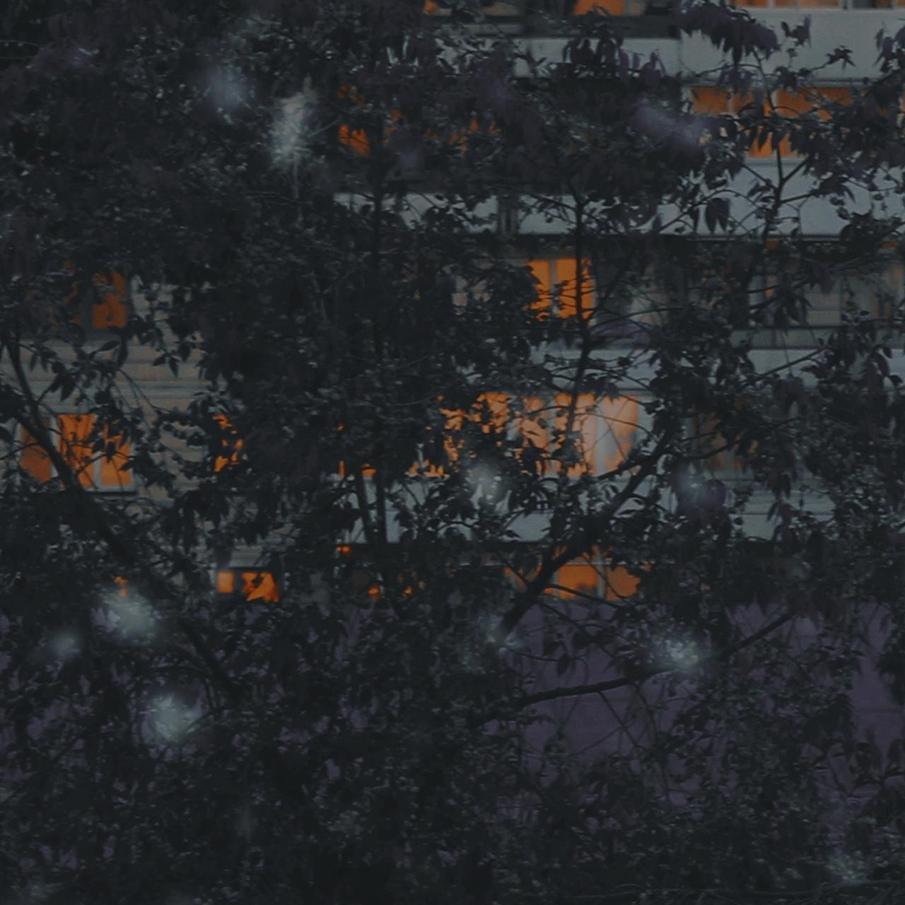 фото из альбома Марка Булгакова №3