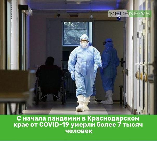 С начала пандемии в Краснодарском крае от COVID-19...