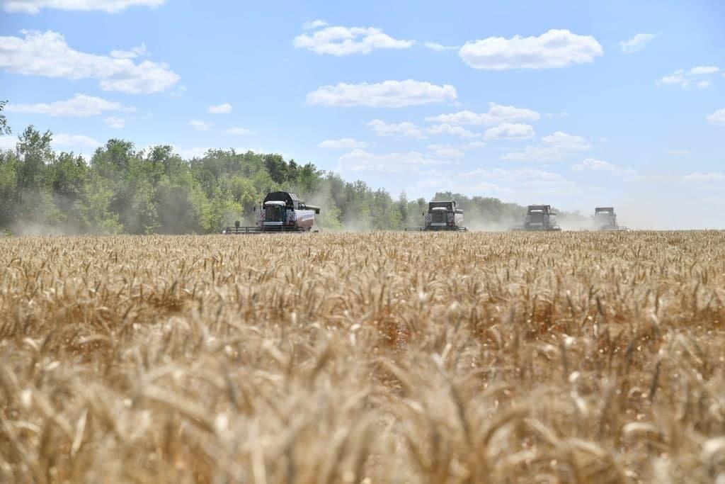 Наши хлеборобы продолжают собирать урожай