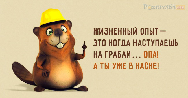 IS_VOcIzUD8.jpg?size=650x340&quality=96&