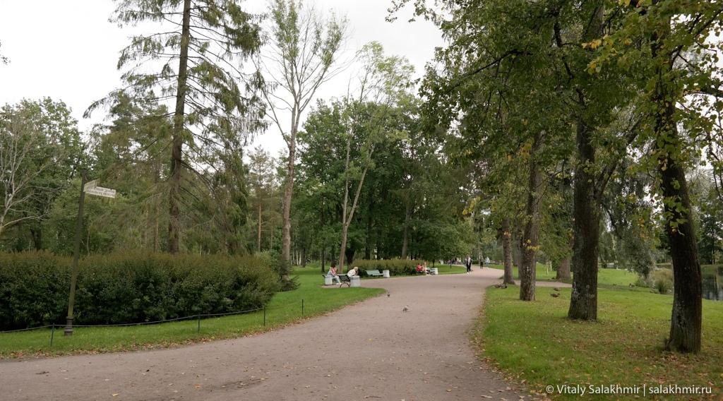 Обзор дворцового парка в Гатчине 2020