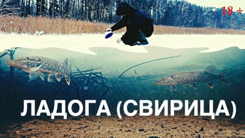Рыбалка на Ладоге 2021 Ловля щуки на жерлицы и донки
